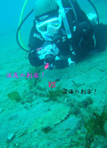 080202ichiko1web