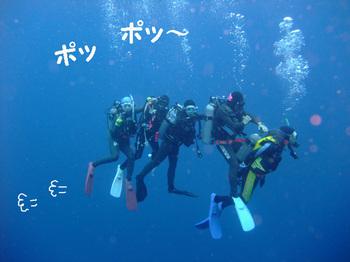 Yonaguninishikawa8web