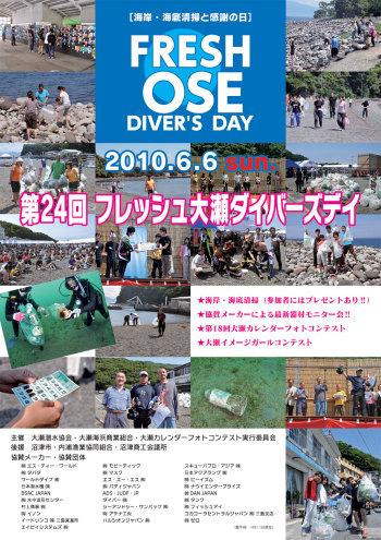Diversday2010_web