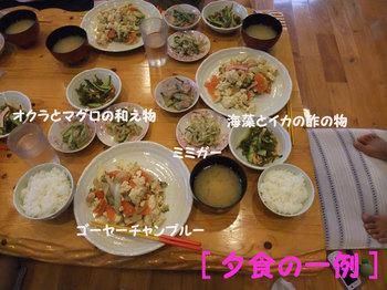 100621ishigaki127web_2