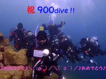 130310900dive1web_3