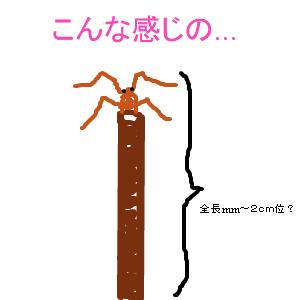 Cocolog_oekaki_2011_06_23_08_30