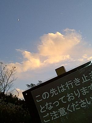 111101susuki8web