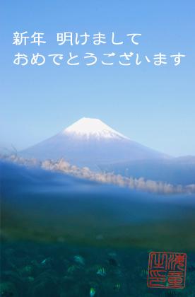 Fujiweb